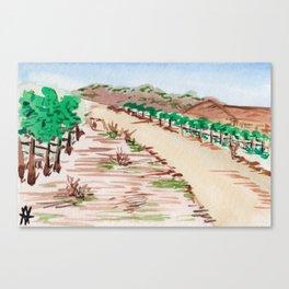 Napa, California Vineyard Canvas Print