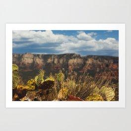 Arizona Land Art Print