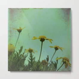 Fragile Flowers Metal Print