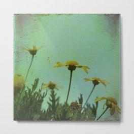 Fragile Flowers Metal Print