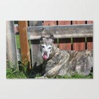 greyhound Canvas Prints featuring Greyhound by Kamilla