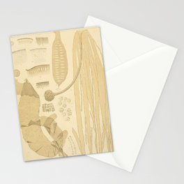 Botanical Kelp Stationery Cards