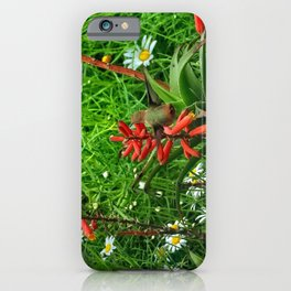 Sipping Nectar iPhone Case