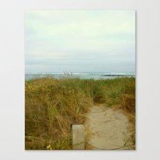 Ocean Path Canvas Print