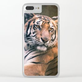 Tiger No 6 Clear iPhone Case