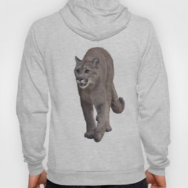 Florida panther or cougar digital painting on white background Hoody