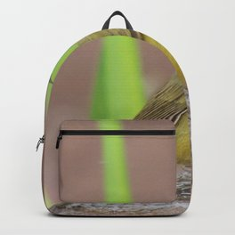 Yellow Warbler at the Fountain Backpack