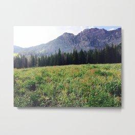 Cecret Lake Metal Print
