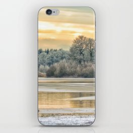 Walk on the winter lake iPhone Skin