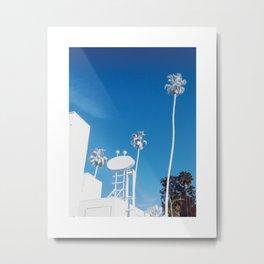 White Palm Metal Print