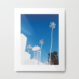 White Palm Metal Print