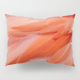 Flamingo Feathers Pillow Sham