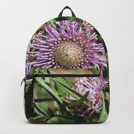 Protea Isopogon Backpack