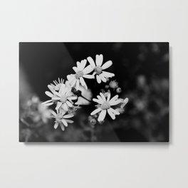 Mini Wildflowers B&W Metal Print