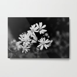 Mini Wildflowers B&W Metal Print