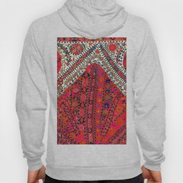 Pink Wildflower Sunshine III // 18th Century Colorful Pinkish Red Blue Sapphire Metallic Happy Patte Hoody