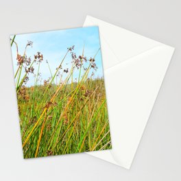 flowers in daylight Stationery Cards