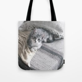 Our kitty on Quebec St. 03 Tote Bag