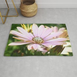 African Daisy Close Up Rug