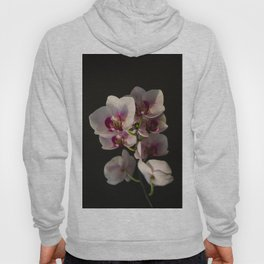 Orchid Branch Hoody