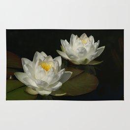 Water Lilys Rug