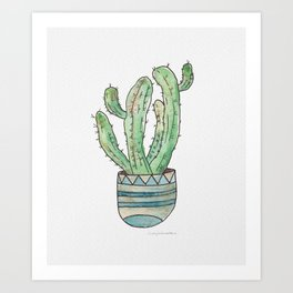 Hedge Cactus in Pot Art Print