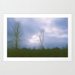 Harvest Trees Art Print