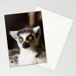 Lemur Catta Stationery Cards