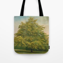 Trees of Trent Park #3 Tote Bag