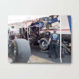 The Beast at Rest Metal Print