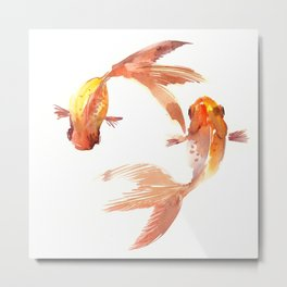 Goldfish Feng Shui, Koi Fish Metal Print