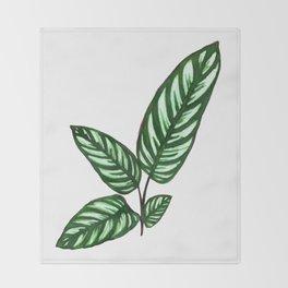 Calathea Throw Blanket