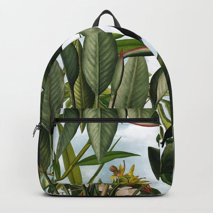 Besoulia II Backpack