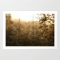 GOLD FOREST Art Print