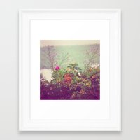 cape cod Framed Art Prints featuring Cape Cod by Antha P