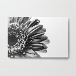 Gerbera 2 Metal Print