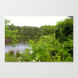 Wild Flowers on the lake Canvas Print