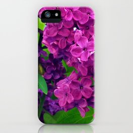 484 - Purple and Magenta Lilacs iPhone Case