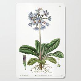 Purple Caucasian Primrose / W. Curtis 1857 Cutting Board