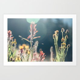 FALL FIELDS | 02 Art Print