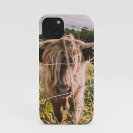 Highland Cows in the Sun iPhone Case