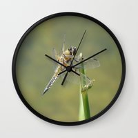 dragonfly Wall Clocks featuring Dragonfly  by Loods23