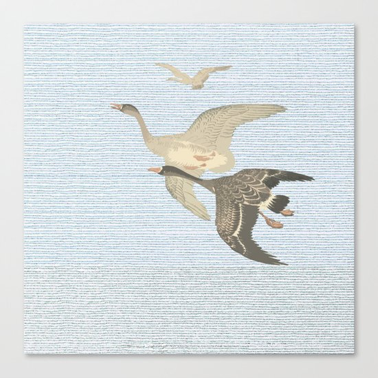 Nothing to match the flight of wild birds flying Canvas Print