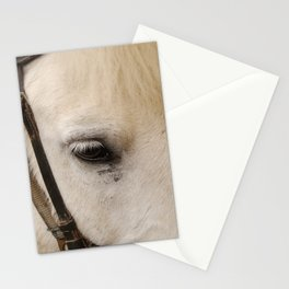 Face of a Horse Stationery Cards