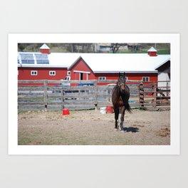 Rebel Horse Art Print