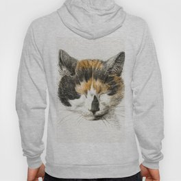 Head of a calico cat with closed eyes (1819) by Jean Bernard (1775-1883) Hoody