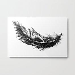 Feather- B&W // Illustration Metal Print