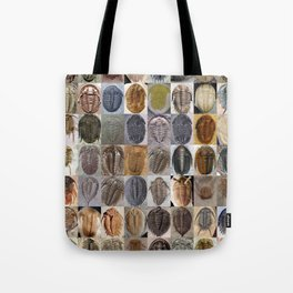 Trilobite Montage Tote Bag