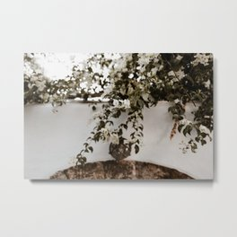 Blossom in Rhodes Metal Print