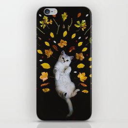 Kitty Harvest (Color) iPhone Skin